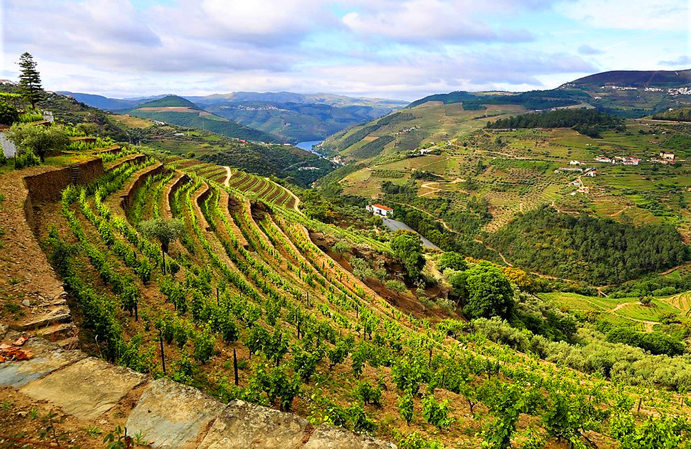 independent-walking-portugal-douro