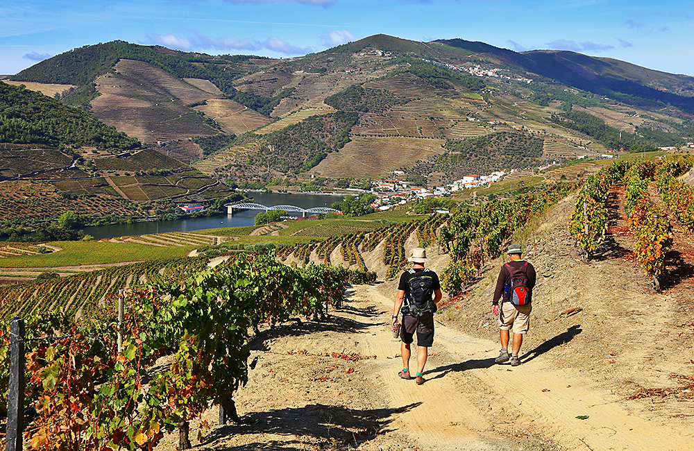 portugal-self-guided-walks,-douro
