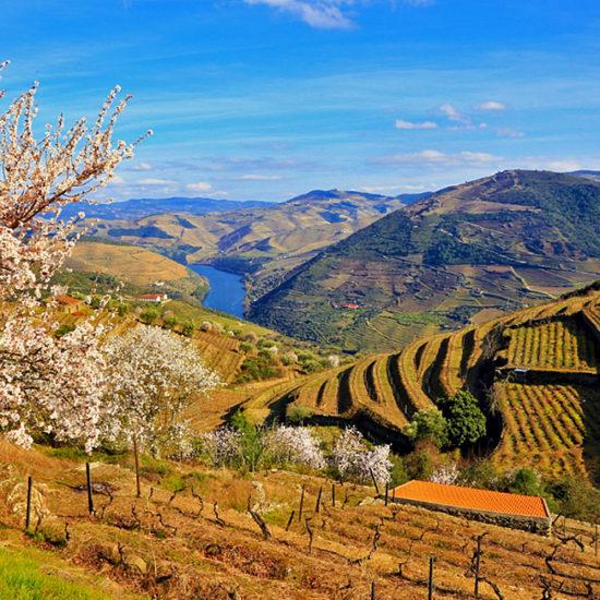 unguided-trekking-portugal-douro