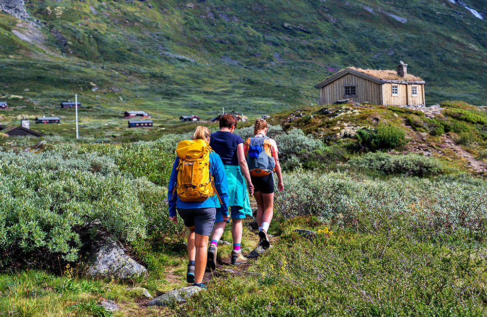 jotunheimen independent trekking tour in norway