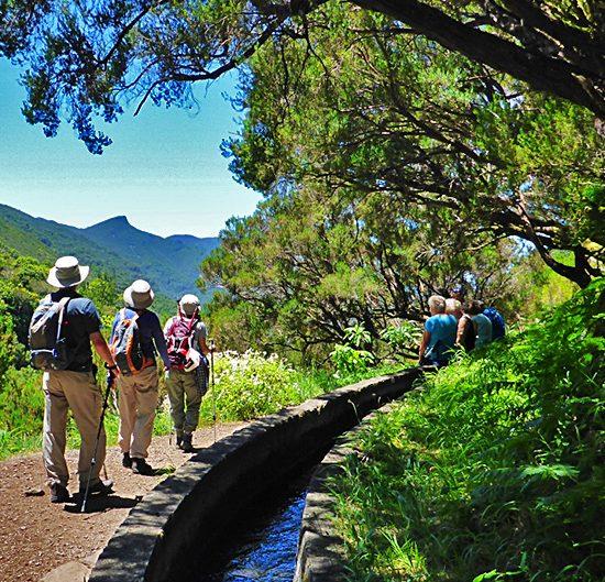 madeira self-guided walking tour