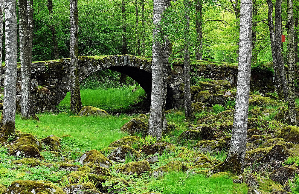 independent walking and hiking tour in sweden, halland trail