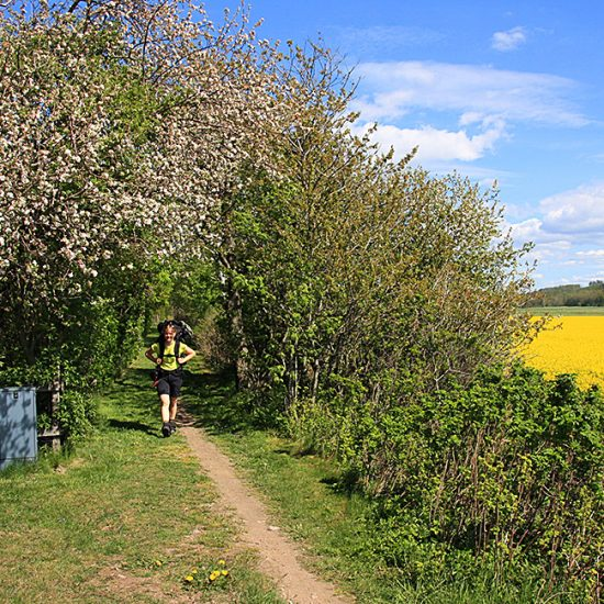independent walking tours in southern sweden, halland