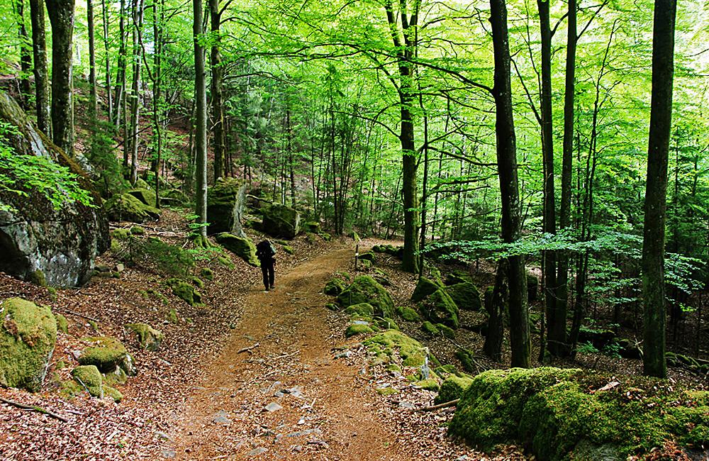 halland trail independent walking tour, sweden