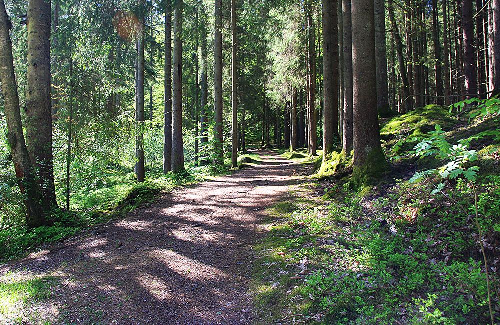 hallansleden self-guided walking holidays, sweden