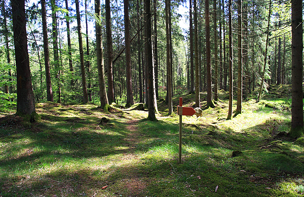 sweden self-guided walking and hiking tours along the halland trail